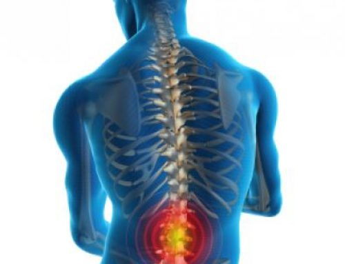 """Lower back pain, what to do now?"" – Physiotherapy Delft"