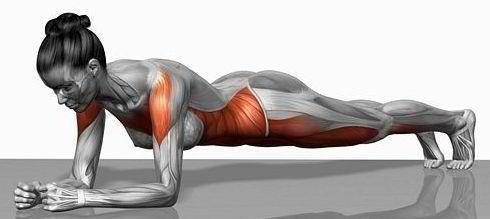 oefening lage rugspieren